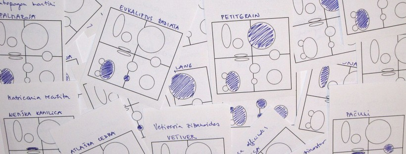 teorija funkcionalnih skupin