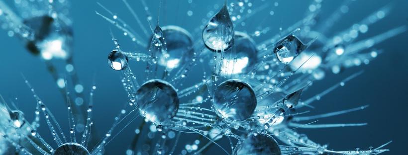 hidrolati zmote hlapne snovi